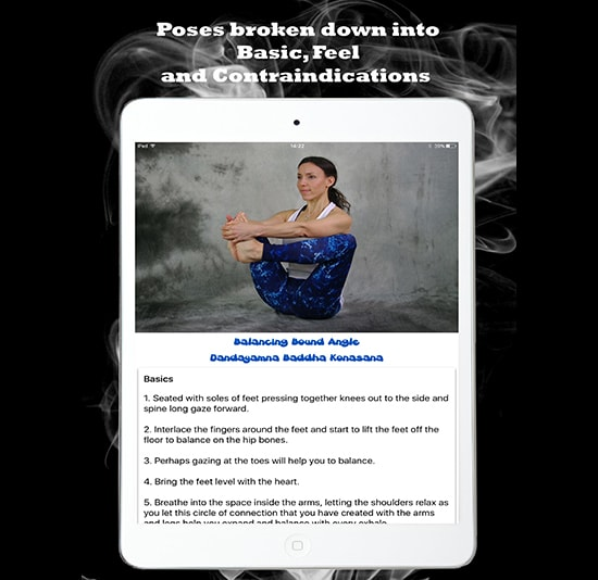 Poses broken down into Basic, Feel and Contraindications
